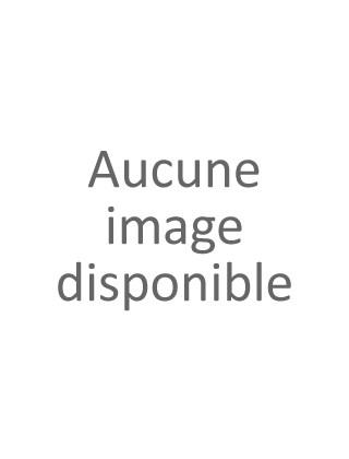 NANOFIBRES 30 GR POUDRE DE CHEVEUX